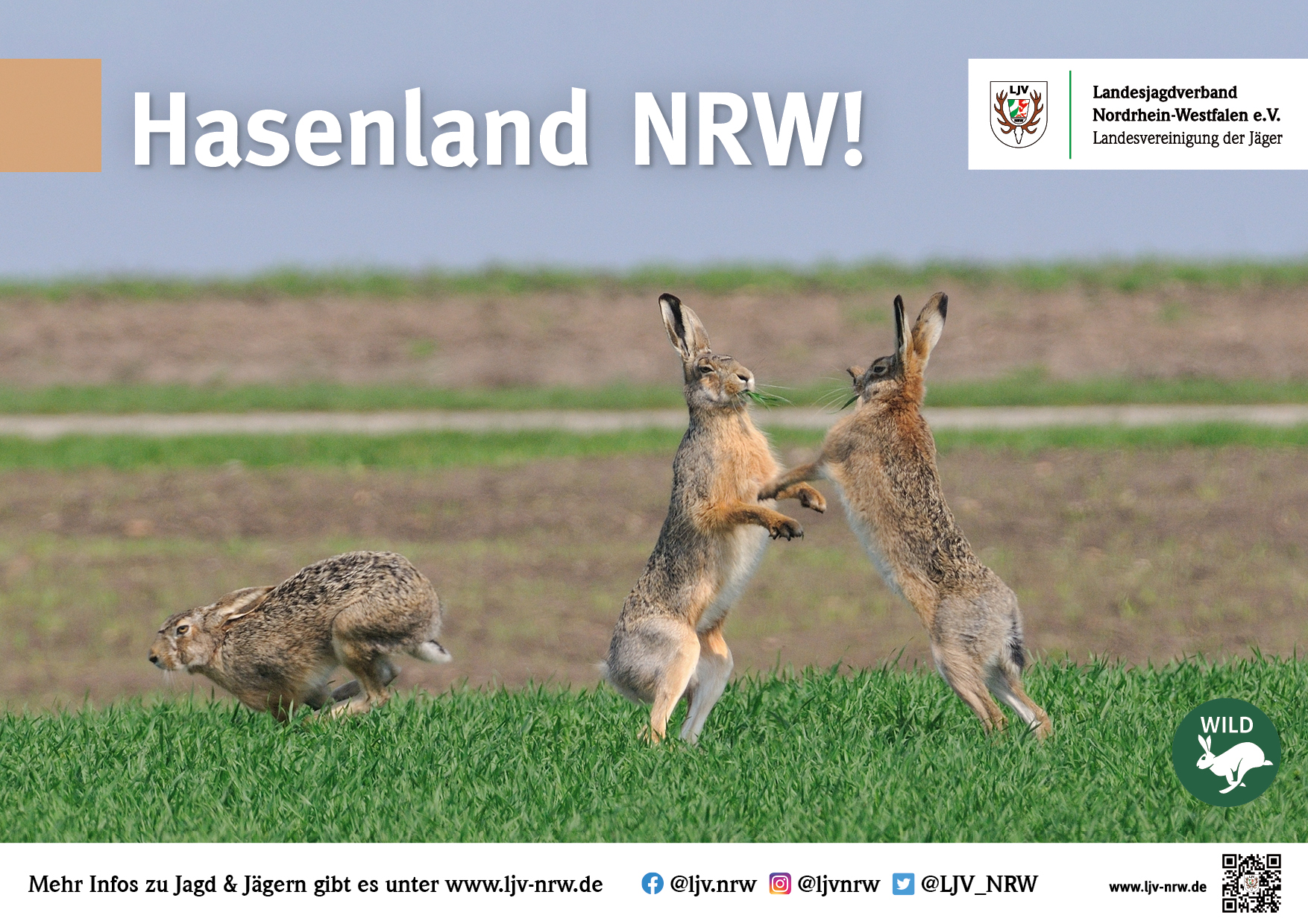A4 Poster 03/21 - Hasenland NRW